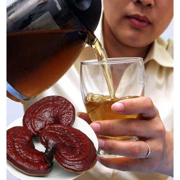 Chế biến sử dụng linh chi hiệu quả cho người bệnh gan