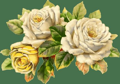 30 Rosas Vintage Para Scrap Rose Png