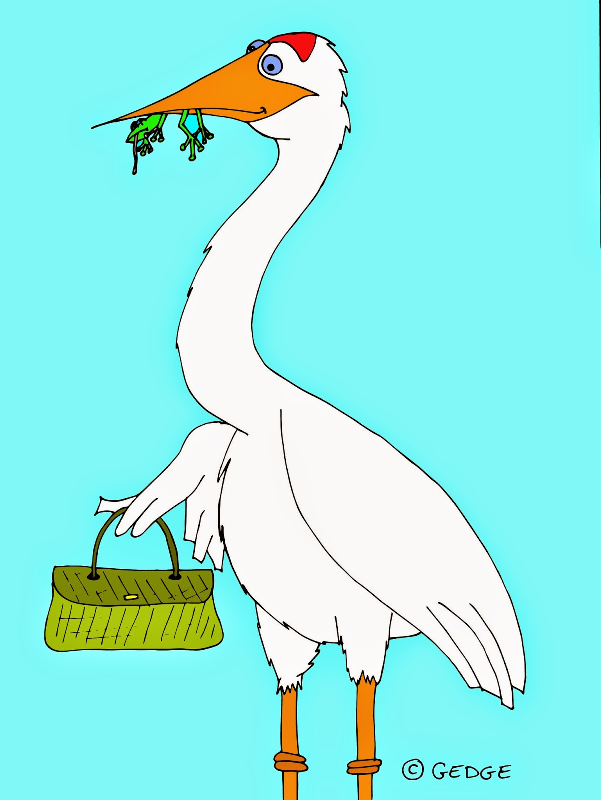 A crane (bird) with a dead frog in its mouth holding a handbag