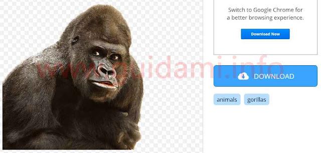 Sito web StickPNG scaricare immagine