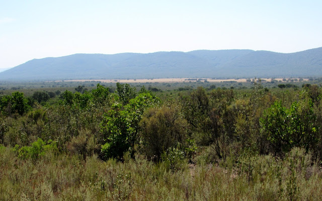 Sierra y raña de Cabañeros