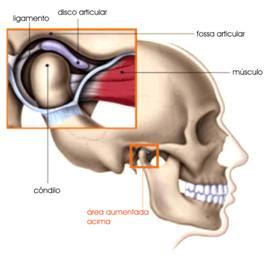 genunchii și articulațiile doare tratamentul articular tiande