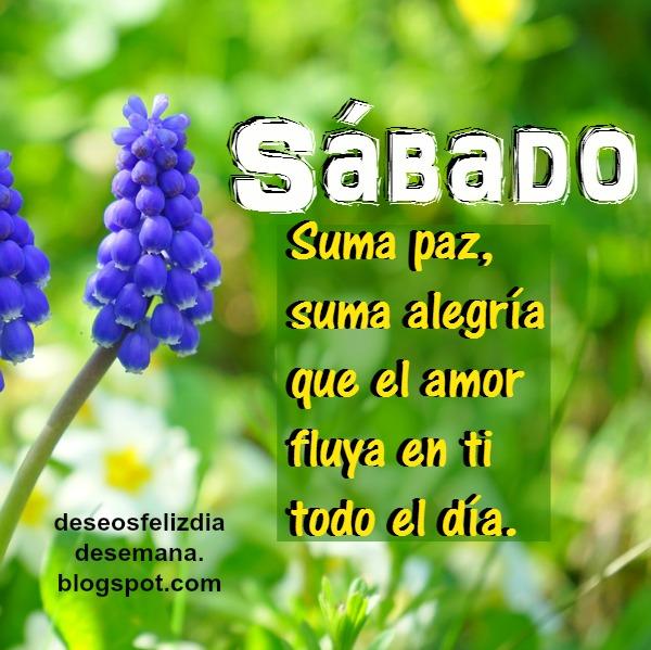 imagen con flor frases de feliz sabado con mensaje cristiano por Mery bracho buenos deseos feliz dia