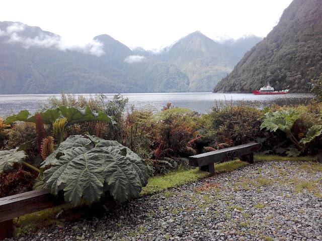 Caleta Gonzalo, Fiordo Reñihué, Parque Pumalín, Chile