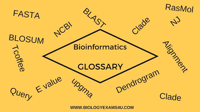 BIOINFORMATICS GLOSSARY