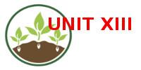 UNITXIII