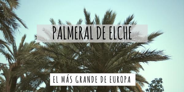 Palmeral de Elche
