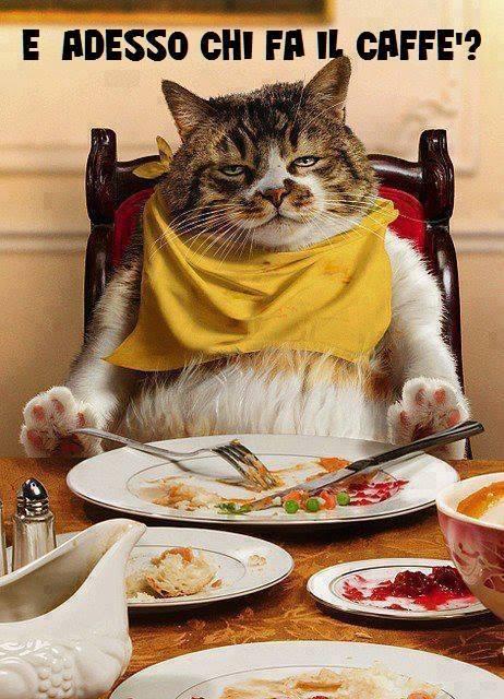 Gif buon pranzo cerca con google buo pranzo t - Immagini di buon pranzo ...