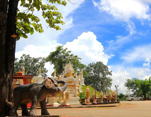 Elephant Visit Chiang Mai Thailand