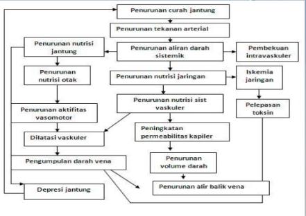 pathway syok hipovolemik