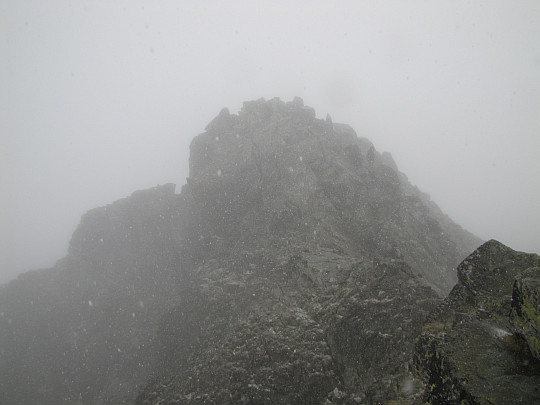 Widok na graniczny wierzchołek Rysów o wysokości 2499,6 m n.p.m.