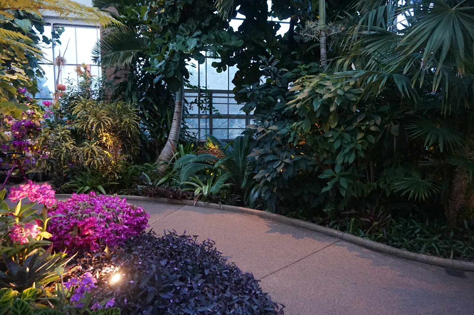 Botanical Garden Opens With Holiday Light