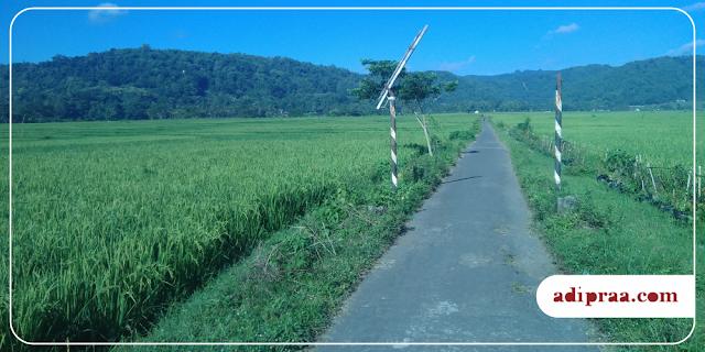 View Pemandangan alam di Kulon Progo, D.I. Yogyakarta | adipraa.com