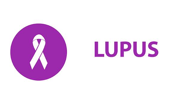 Kisah Cinta Bersama Gadis Lupus