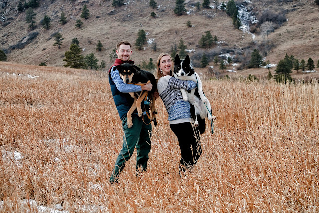 a couple hold up their dogs for a photo during their engagement session in Colorado