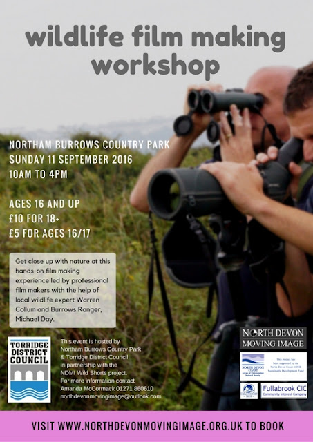 NDMI -  One day workshop for ages 16 and over at Northam Burrows Country Park on Sunday 11 September