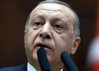 Turkey could play 'mediator role' in Russia-Ukraine crisis: Erdogan