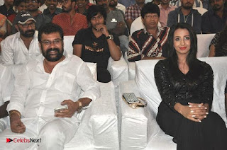 Happy Birthday Telugu Movie Audio Launch  0029.jpg