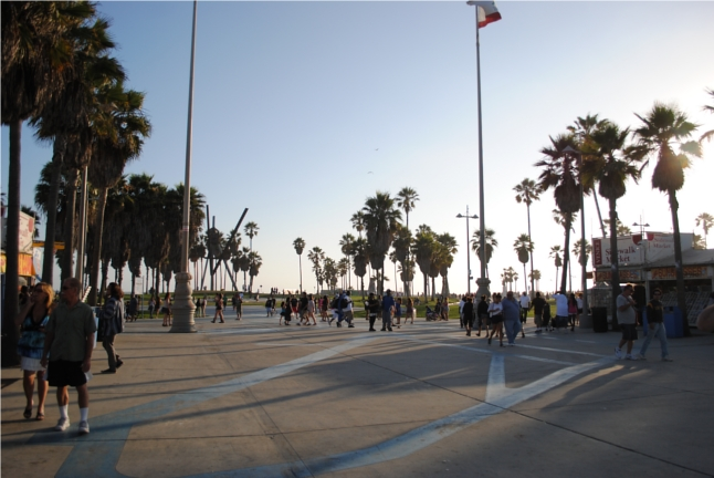 Venice, Venice Beach, Los Angeles, California