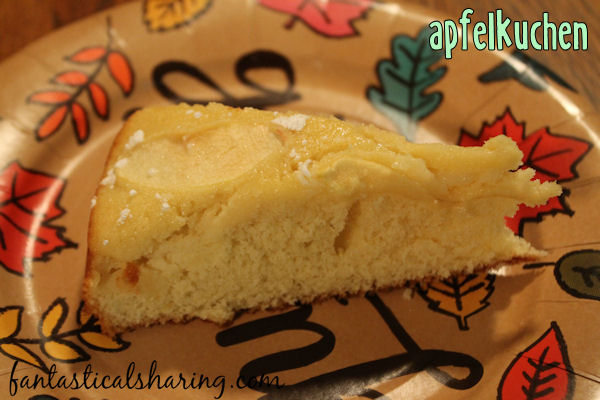 Apfelkuchen // This buttery apple cake is perfect for fall and perfect for celebrating Oktoberfest!