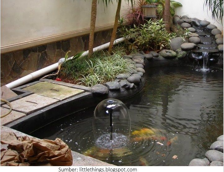 Kolam Ikan Hias