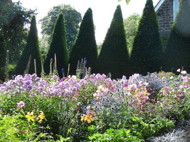 topiary z cisa, ogród angielski, rabata bylinowa