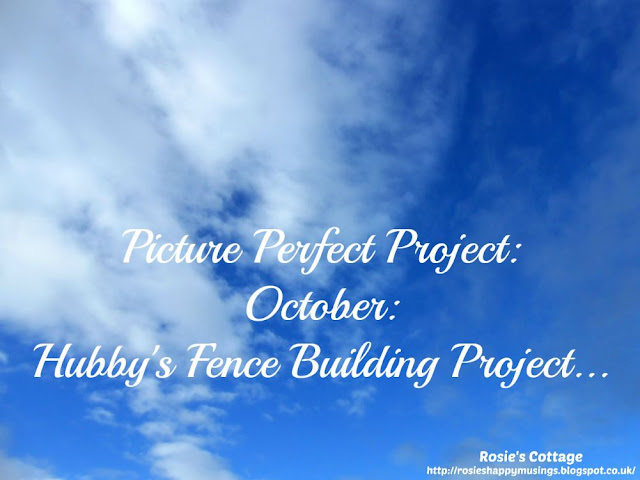 Picture Perfect Project: October: Hubby's Fence Building Project