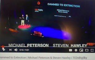 Dammed to Extinction TED Talk