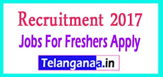 JP Morgan Recruitment 2017 Jobs For Freshers Apply