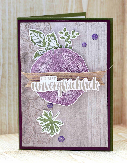 Kraft der Natur | papiertier Indina | Stampin' Up! 2018/19 | Rootetd in nature | BlogHop Team Scraphexe