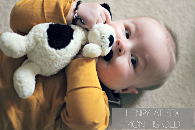 baby at six months old