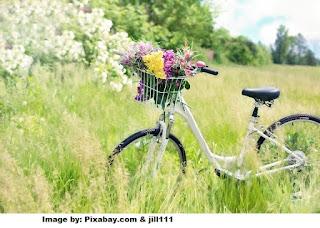 Puisi Ingin Sepeda Impian