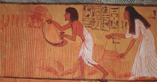 existau teste de sarcina chiar si pe vremea vechilor egipteni