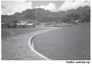 Bentuk Kegiatan Pertanian Indonesia 2