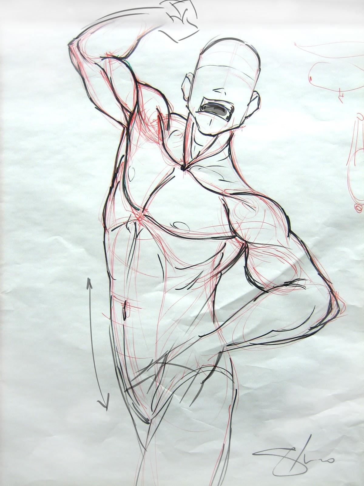 Frame lezione di anatomia in sottostruttura