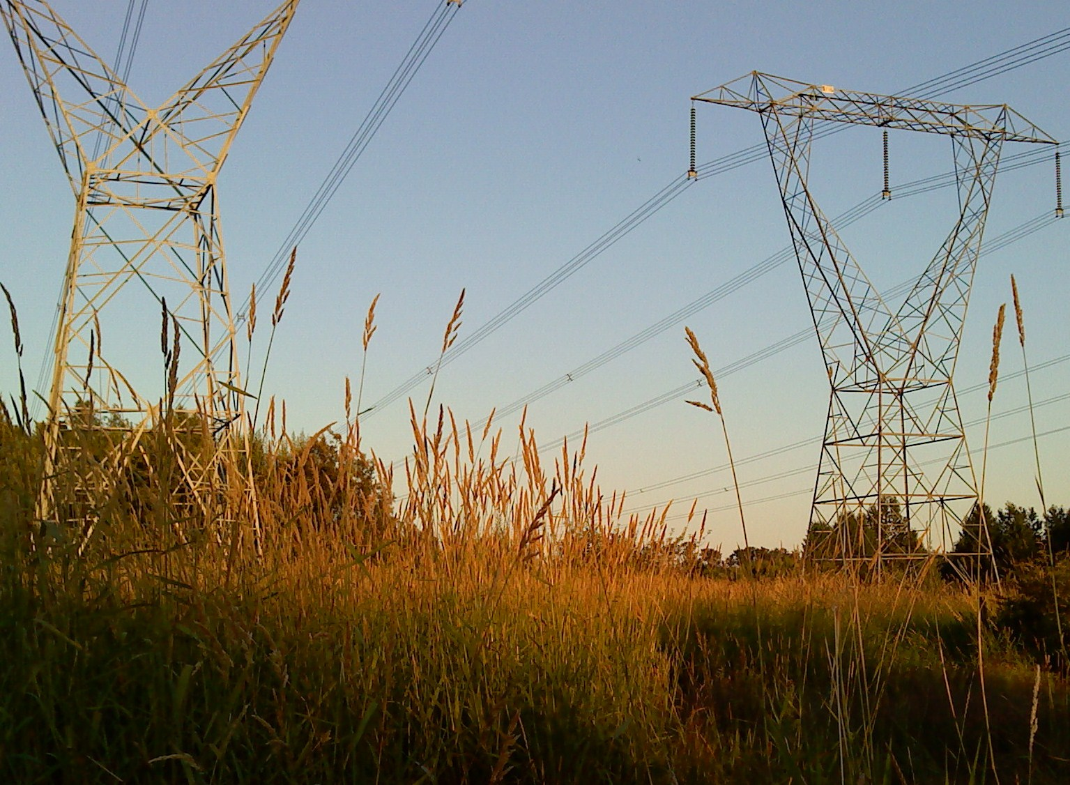 light in essay robber barons essay andrew carnegie robber  essay eh summer evening walk crossed by power lines the nature trail in bear creek park