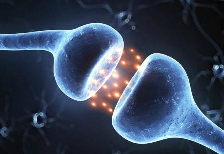 desequilibrio químico cerebro