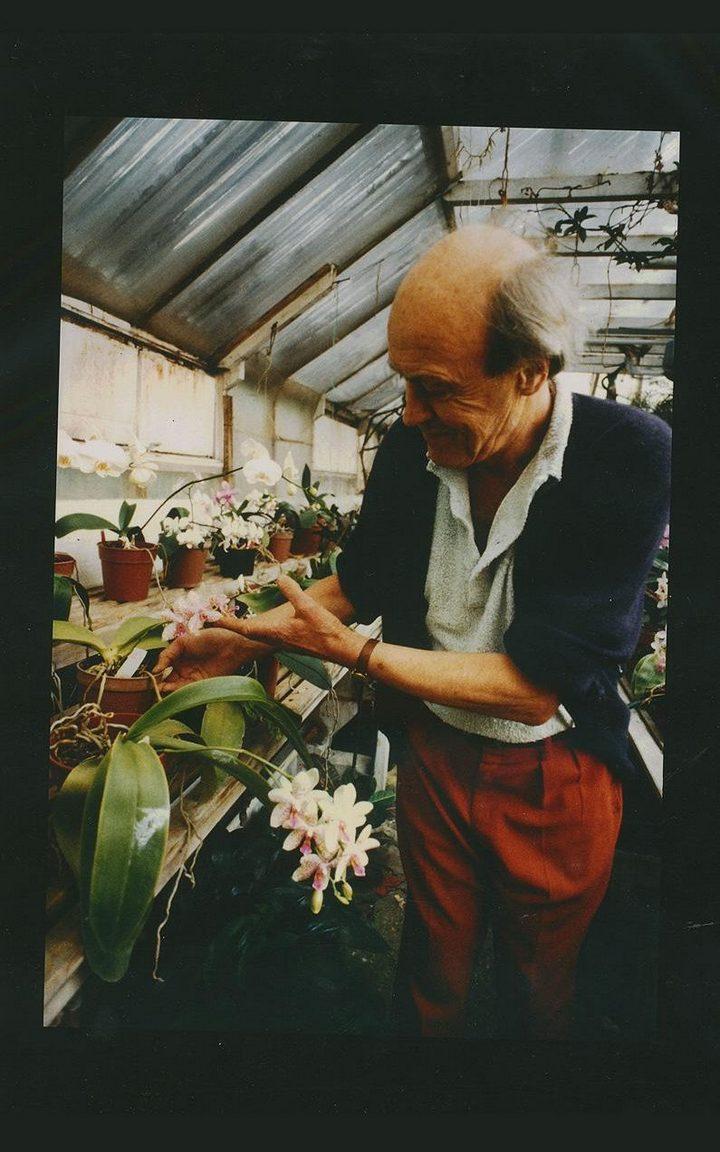 Roald Dahl cultivando orquideas orchids