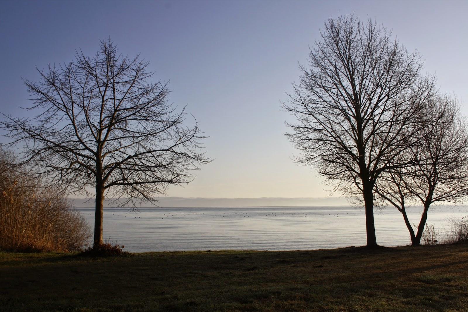 Vista del Lago di Bolsena