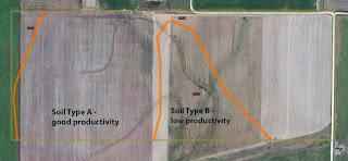 split-field-trial