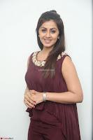 Nikki Galrani in a Brown Shining Sleeveless Gown at Nakshatram music launch ~  Exclusive 043.JPG