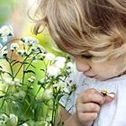 Cuide de teu jardim com otimismo e esperança