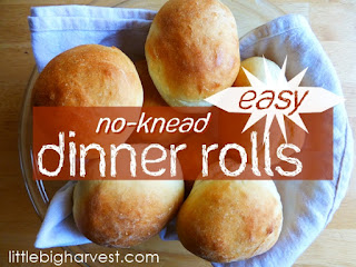 http://www.littlebigharvest.com/2015/03/easy-no-knead-dinner-rolls.html