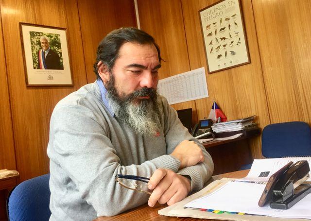 Bienes Nacionales lanza regularización 100% online