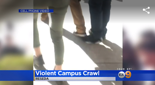 Parents Speak Out After Wild Fight At Grover Cleveland High In Reseda