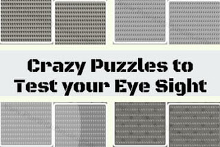 Observational skill test with crazy puzzles
