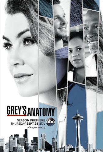 Grey's Anatomy Temporada 14 (HDTV 720p Ingles Subtitulada) (2017)