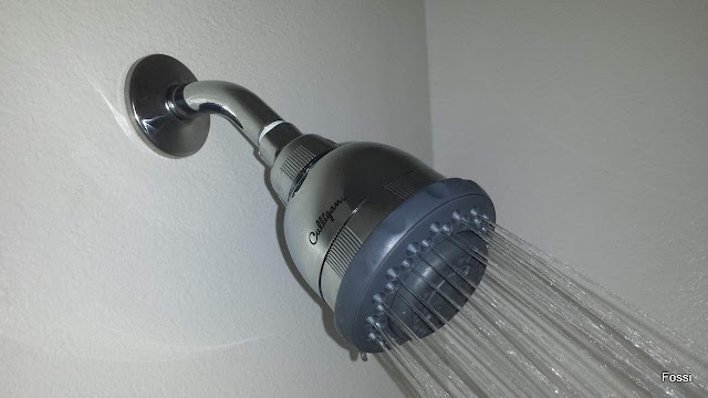 purifying shower head