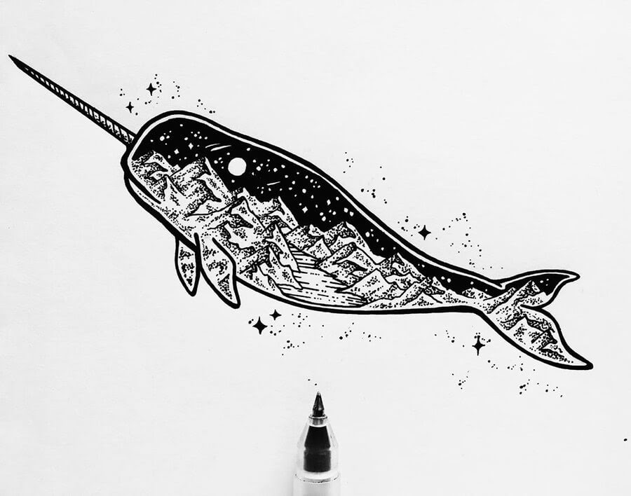 08-Narwhal-Ink-Drawings-Stephanie-Mai-www-designstack-co