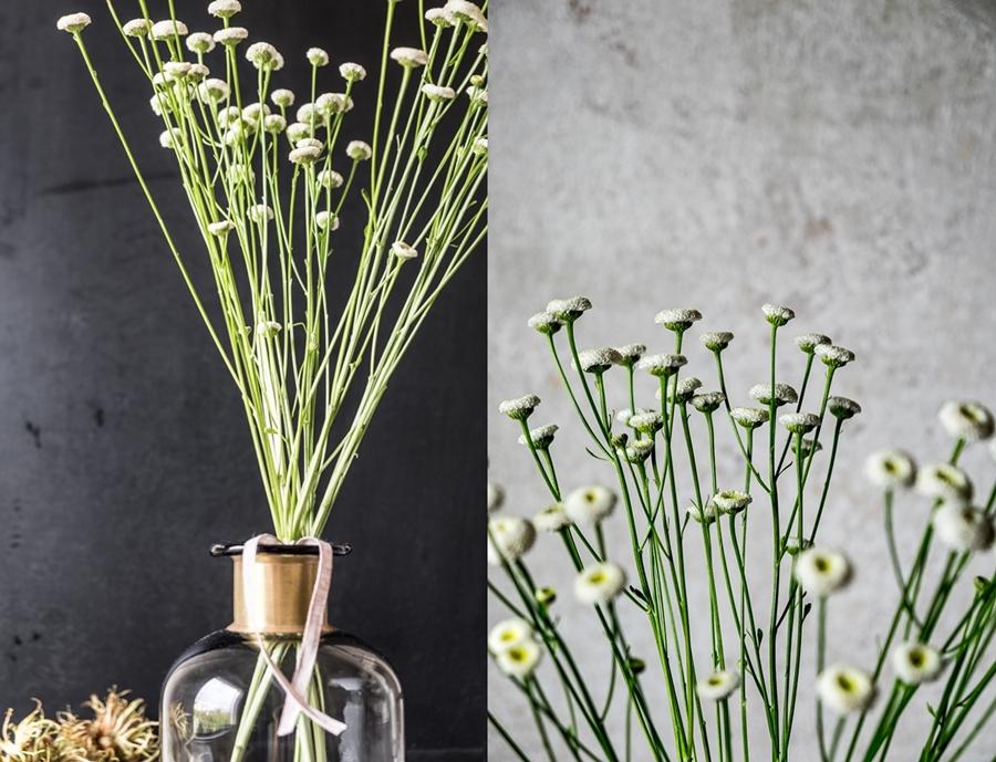 fim.works | Fotografie. Wortakrobatik. Wohngefühl. | Floristik | Kamille als Vasenblume